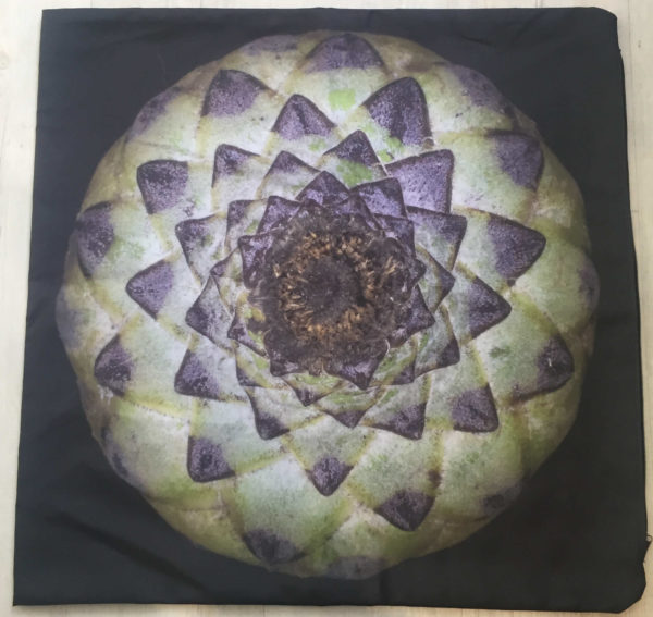 Expanding Star Cushion Cover