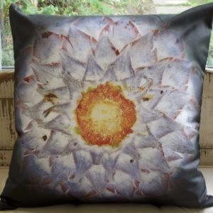 Protea Sun Cushion
